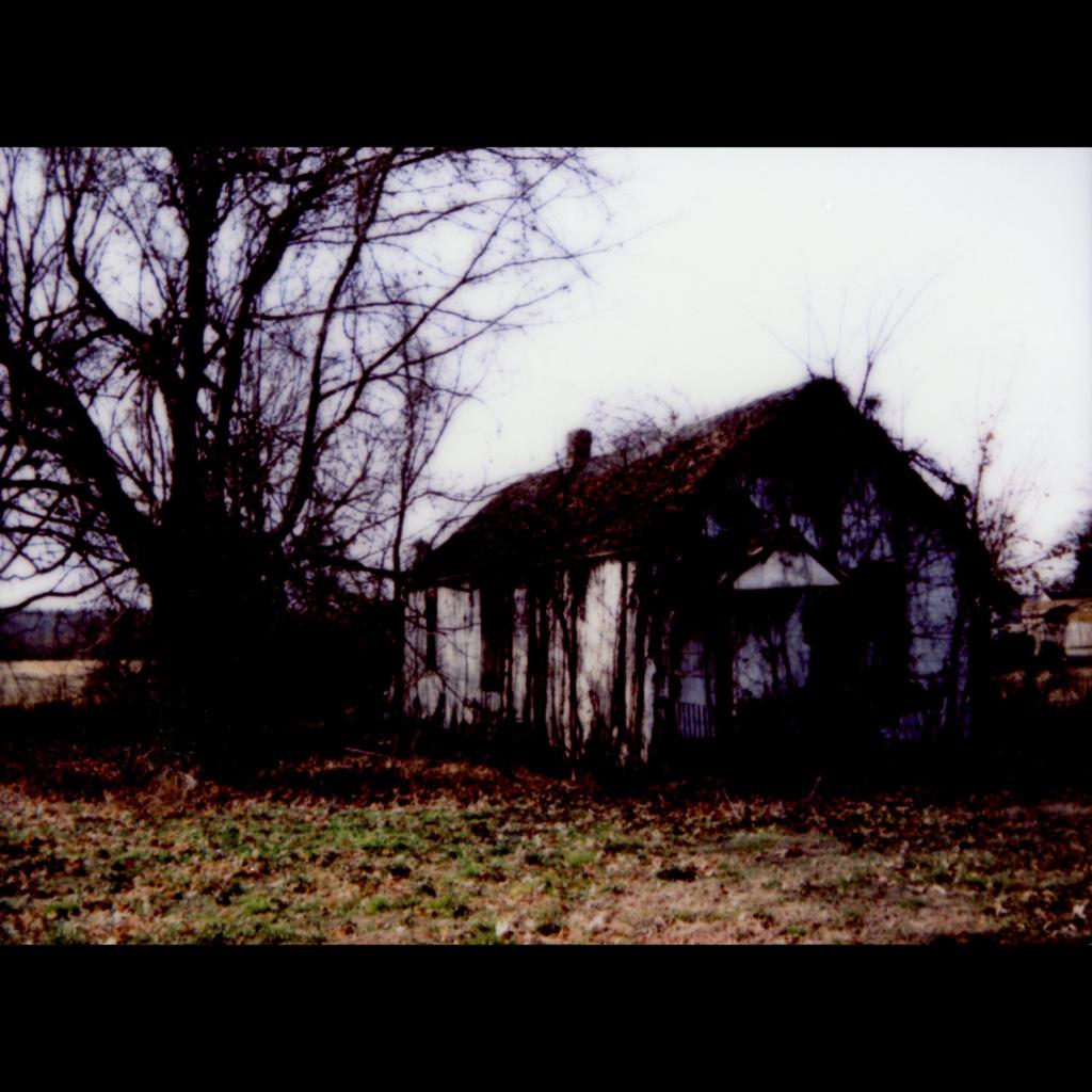 """Center Street, Cairo Illinois"", Shari Wilkins. instant film $300"