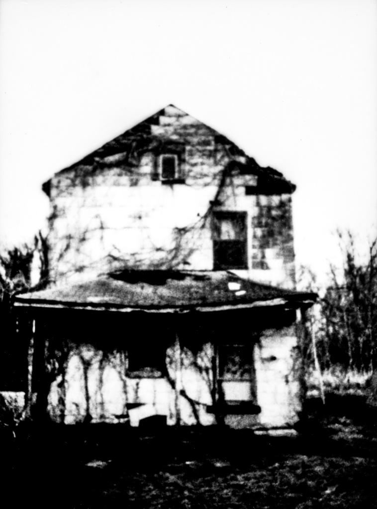 Shari Wilkins-Cairo, Illinois-1 (1)